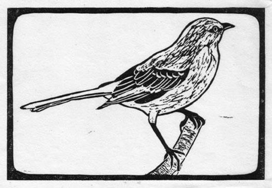 Mockingbird - Northern.jpg