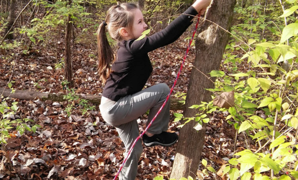 Climbing the tree.png