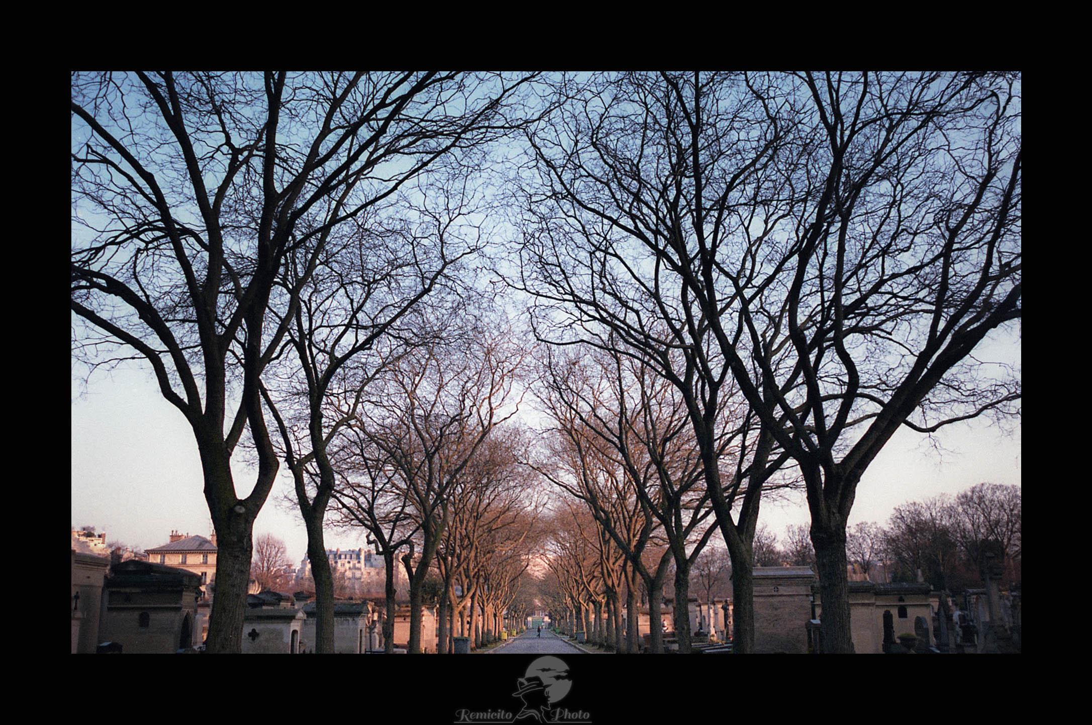 remicito photo, image du jour, photo du jour, photo of the day, photo cimetière, cimetière Montparnasse, cimetière Paris, cementery photo, photographe français, french photographer, fotografo francés, photo argentique, photo paris argentique, film photography, photo coucher de soleil paris, sunset paris