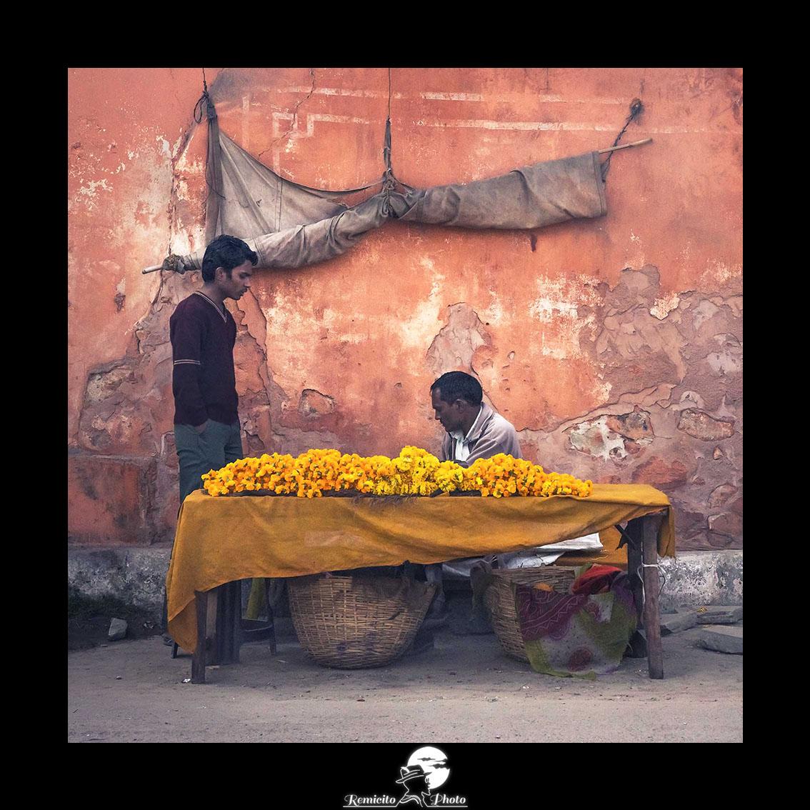 remicito photo, remicito, photo du jour, image du jour, photo jaipur ville rose, belle photo inde jaipur, acheter photo inde, belle photo idée cadeau, magnifique photo inde jaipur, marchand de fleur inde