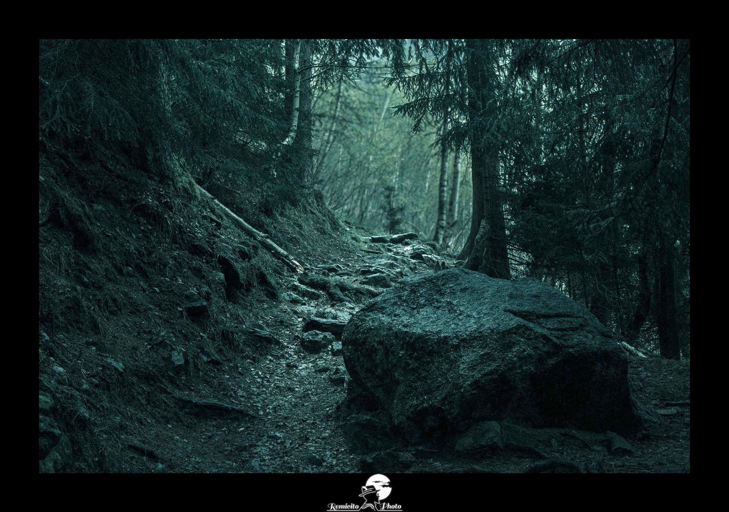 Remicito photo, remicito rémi lacombe photographe voyage, belle photo idée cadeau chemin rocher, idée cadeau décoration photo forêt, image du jour, photo du jour