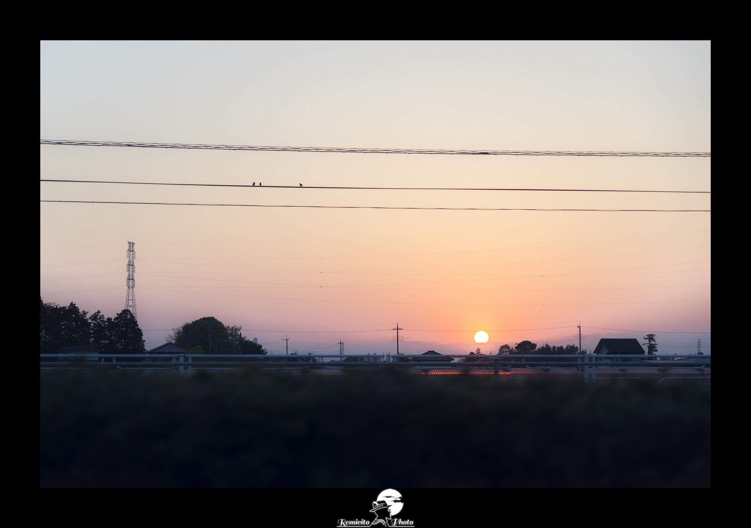 Remicito photo, remicito rémi lacombe photographe voyage, belle photo voyage coucher de soleil, idée cadeau photo oiseaux coucher de soleil, photo voyage japon soleil