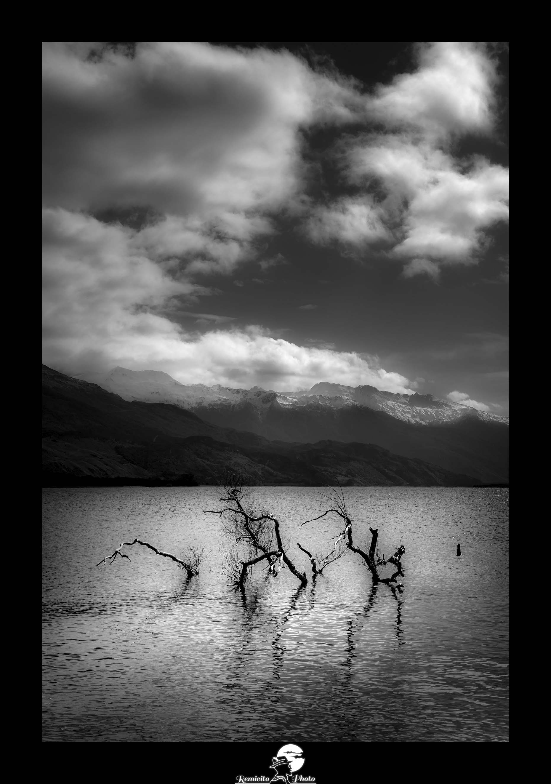 Remicito photo, remicito rémi lacombe photographe paris, belle photo idée cadeau noir et blanc, arbre lac noir et blanc