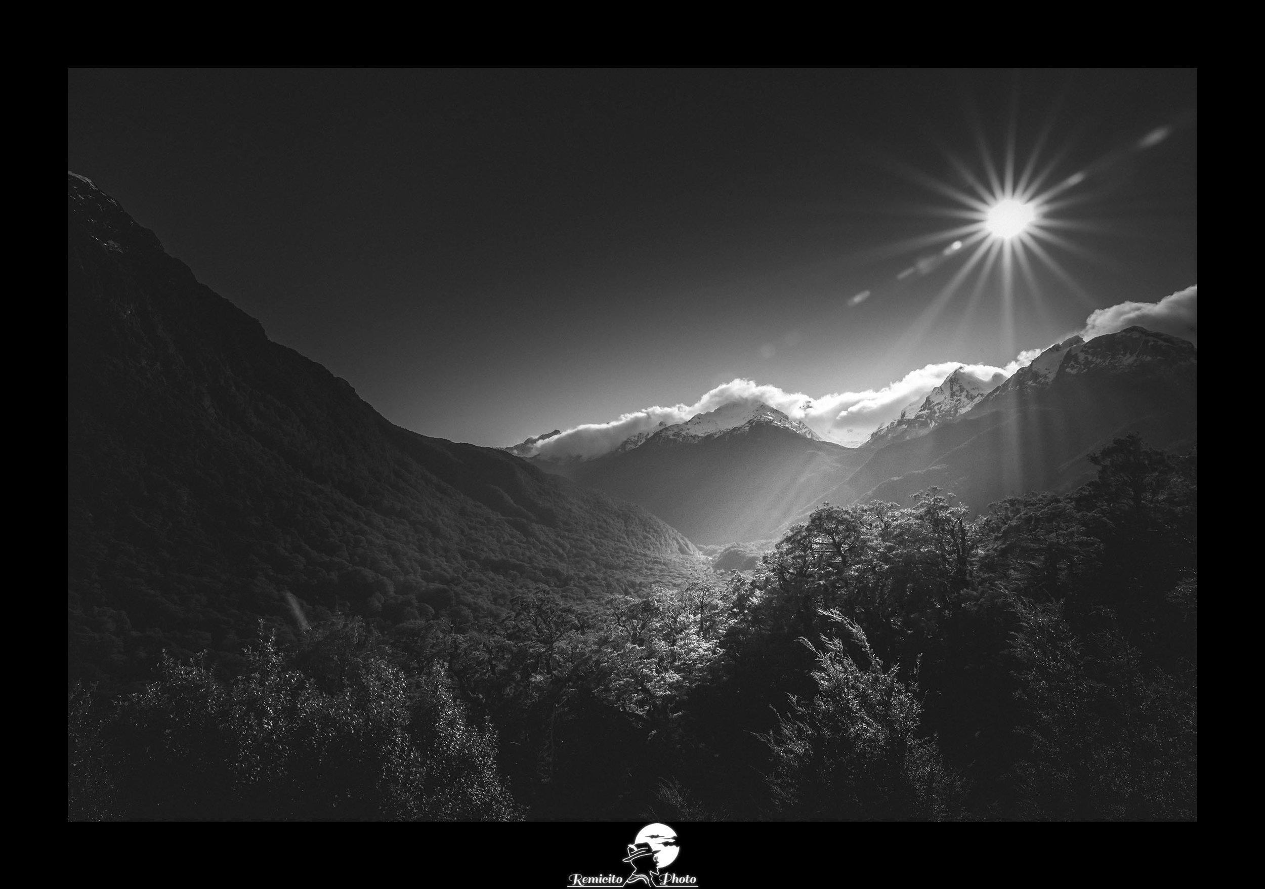 Remicito photo, remicito rémi lacombe photographe paris, belle photo noir et blanc lumière soleil, idée cadeau belle photo nature noir et blanc, nouvelle zélande photo noir et blanc