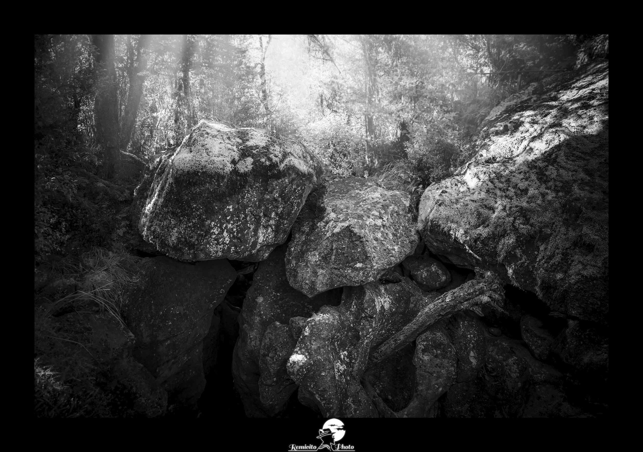 Remicito photo, remicito rémi lacombe photographe paris, belle photo photographe nature voyage remicito, belle photo idée cadeau photo noir et blanc forêt nature, photo nouvelle zélande noir et blanc rocher nature