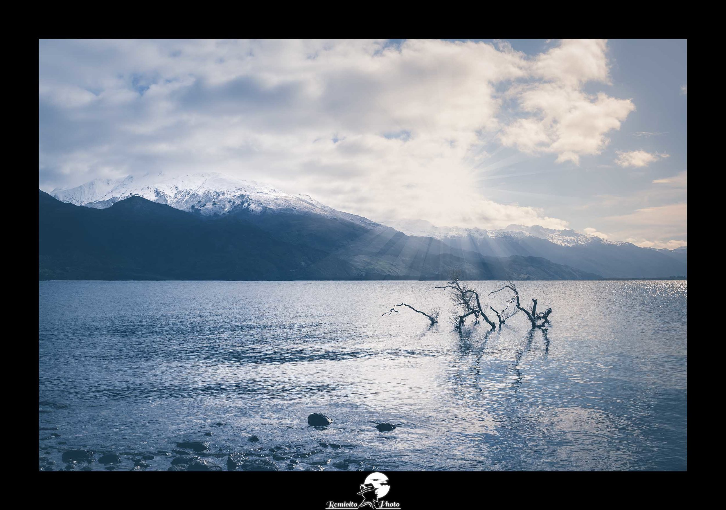 Remicito photo, remicito rémi lacombe photographe paris, belle photo arbre lac nouvelle zélande, idée cadeau belle photo nature nouvelle zélande lac arbre