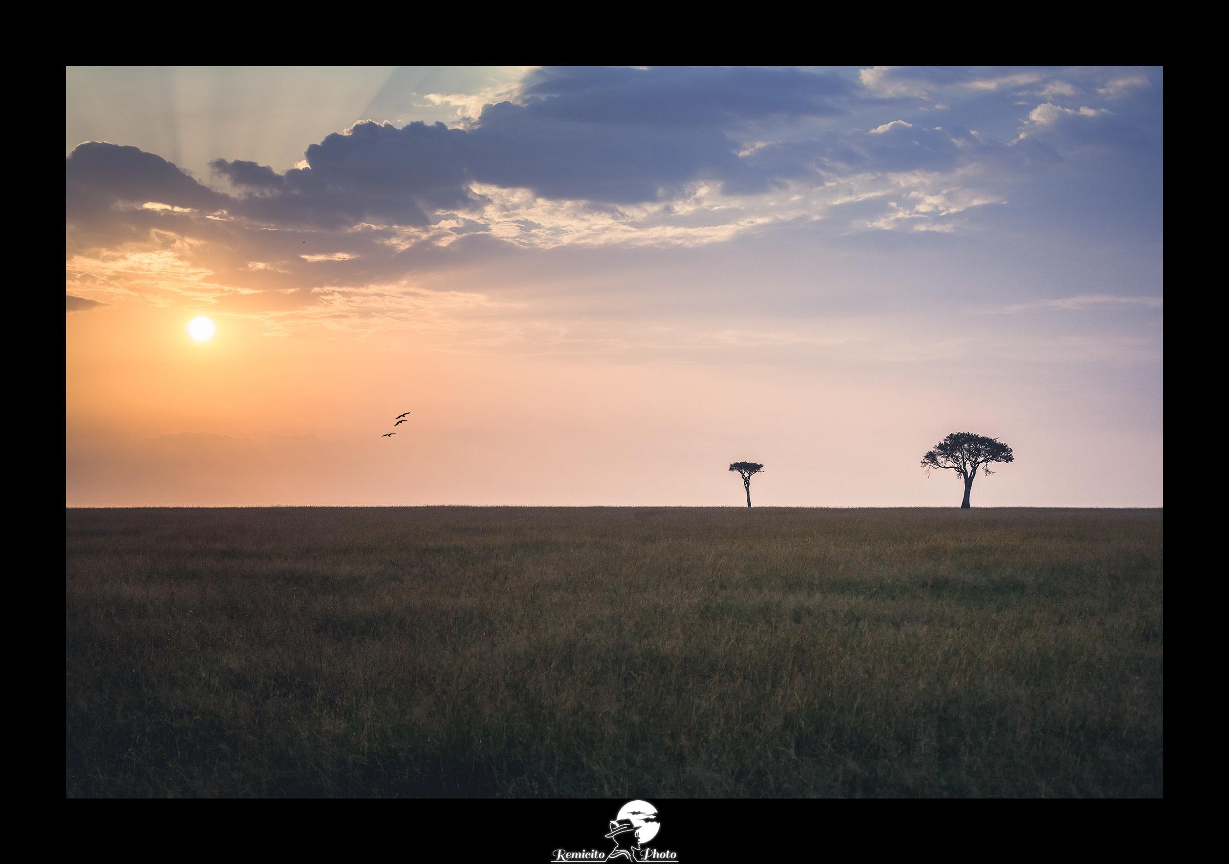 Remicito photo, remicito photo rémi lacombe photogrpahe paris, belle photo idée cadeau coucher de soleil, photo afrique kenya masai mara coucher de soleil
