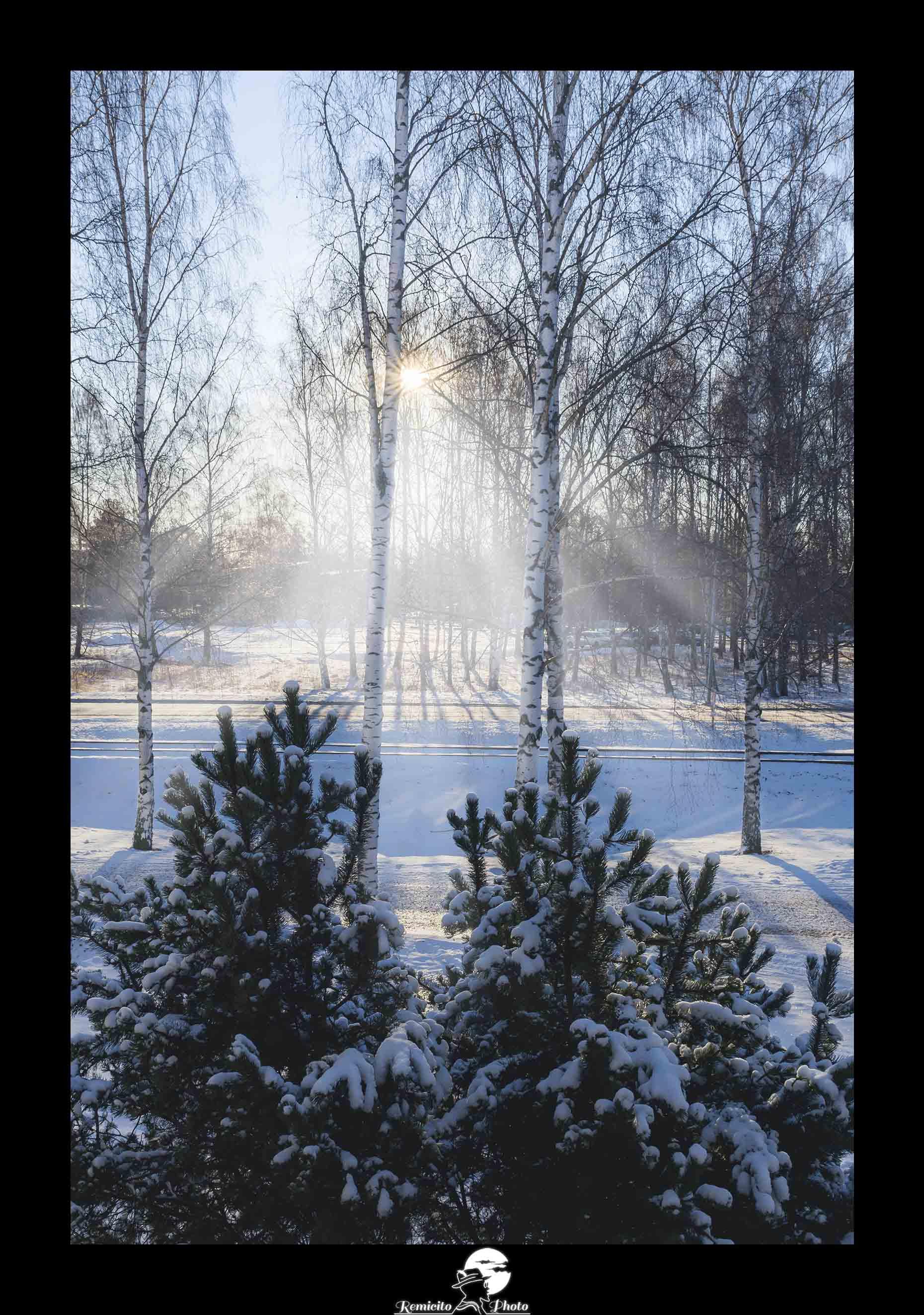 Remicito photo, remicito rémi lacombe photographe paris, belle photo soleil finlande neige, idée cadeau photo soleil neige