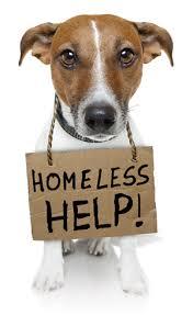 homelesshelp.jpg
