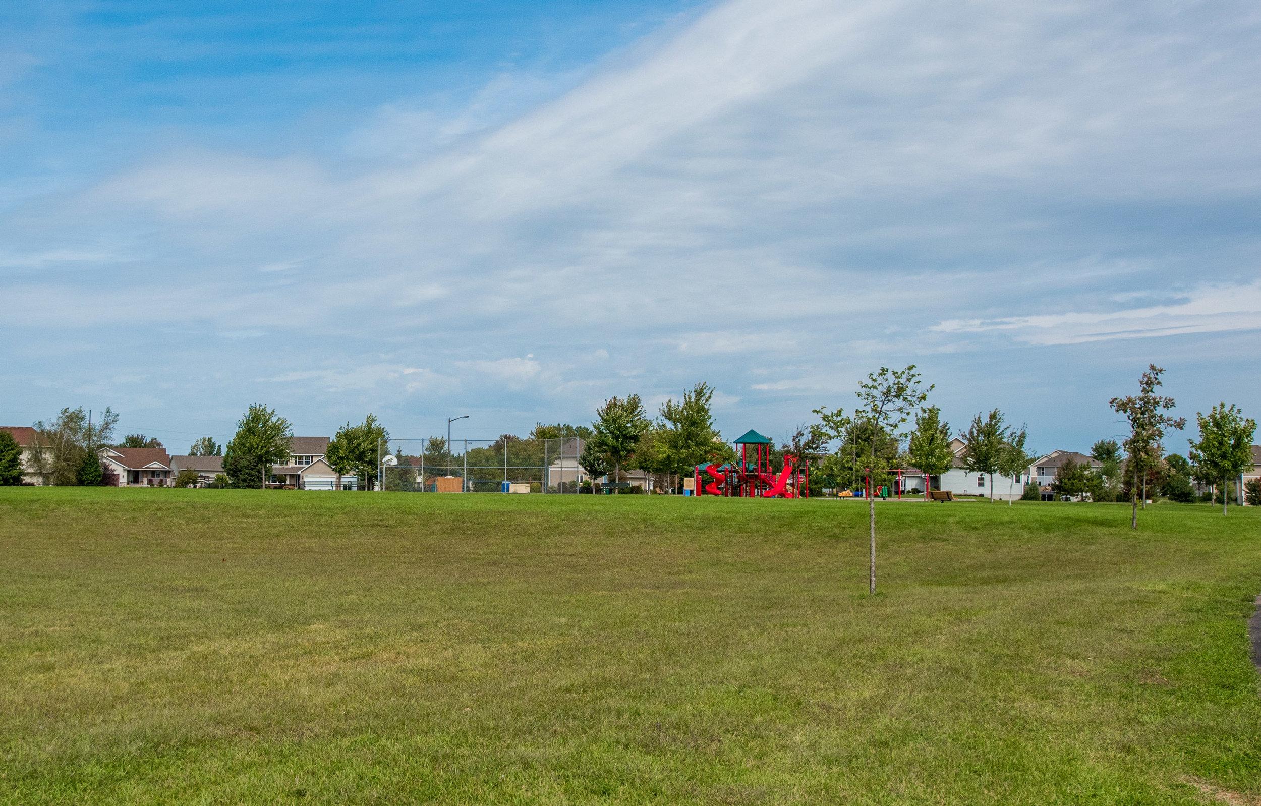 16619 Falkirk Trail, Lakeville MN-31.jpg