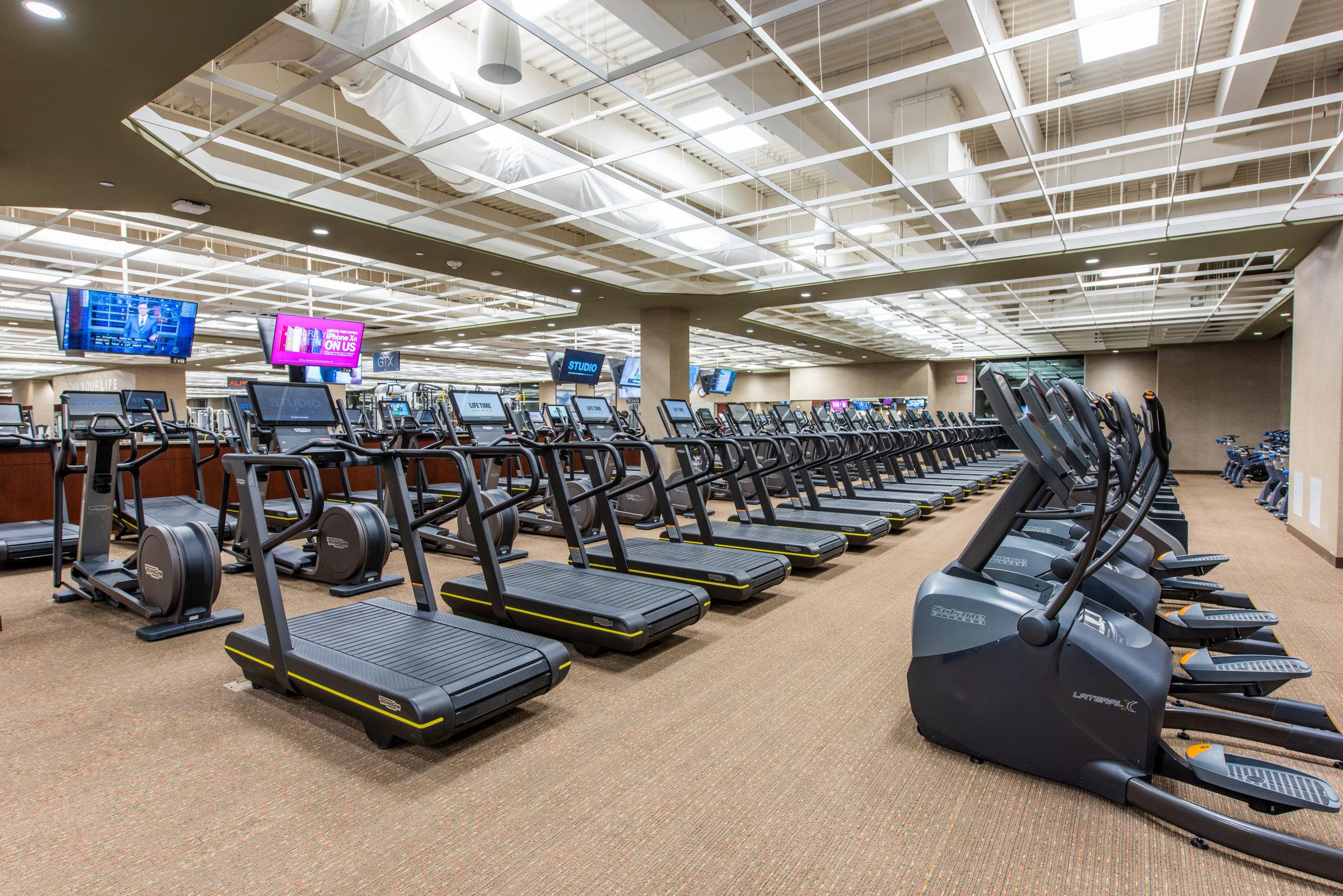 16 FitnessC.jpg