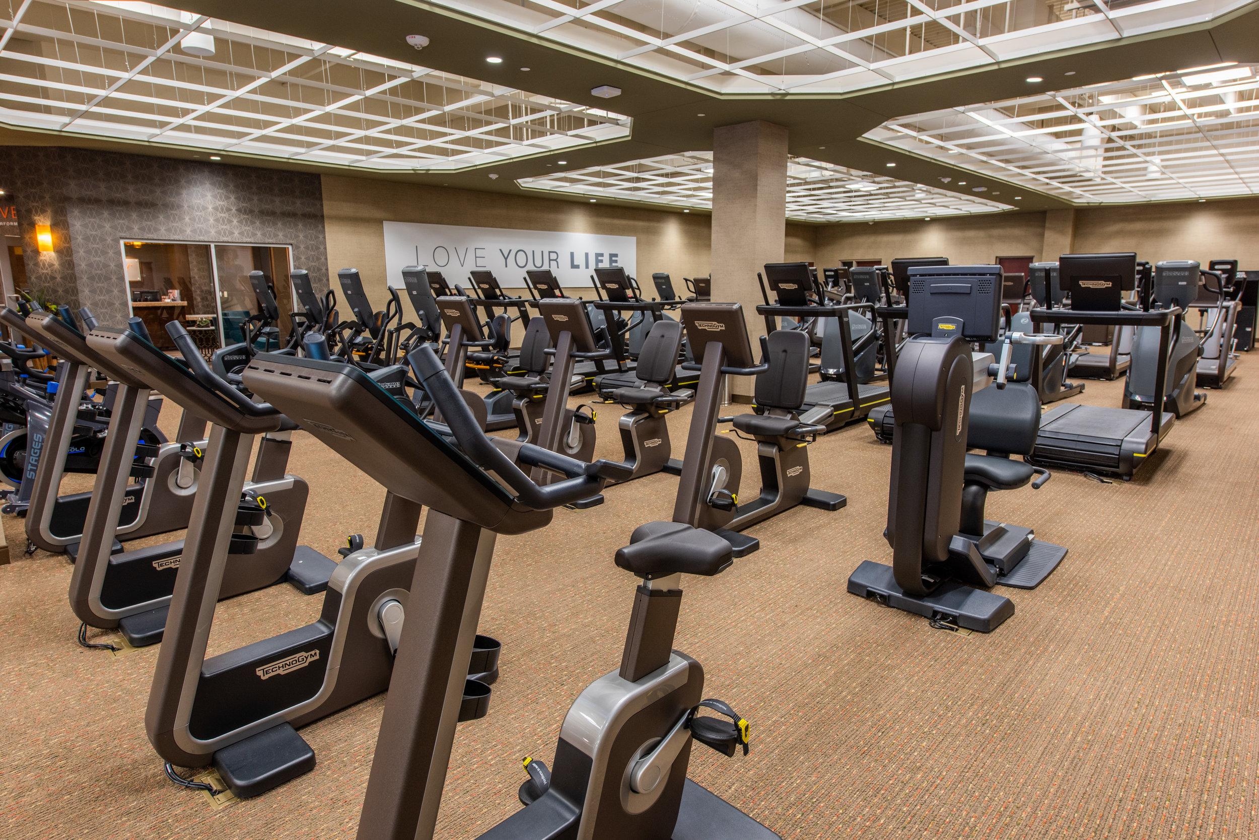 16 FitnessN.jpg