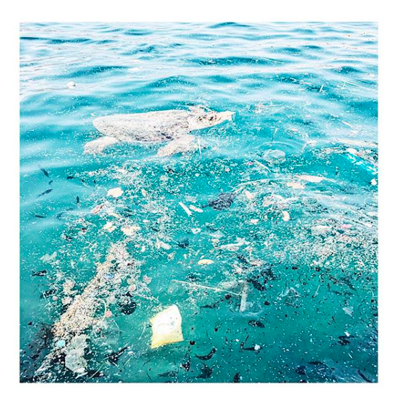 Turtles in Kastellorizo swimming through rubbish and microplastics. We regularly get nets to clean the harbour but are ridiculed by locals who refuse to do the same.