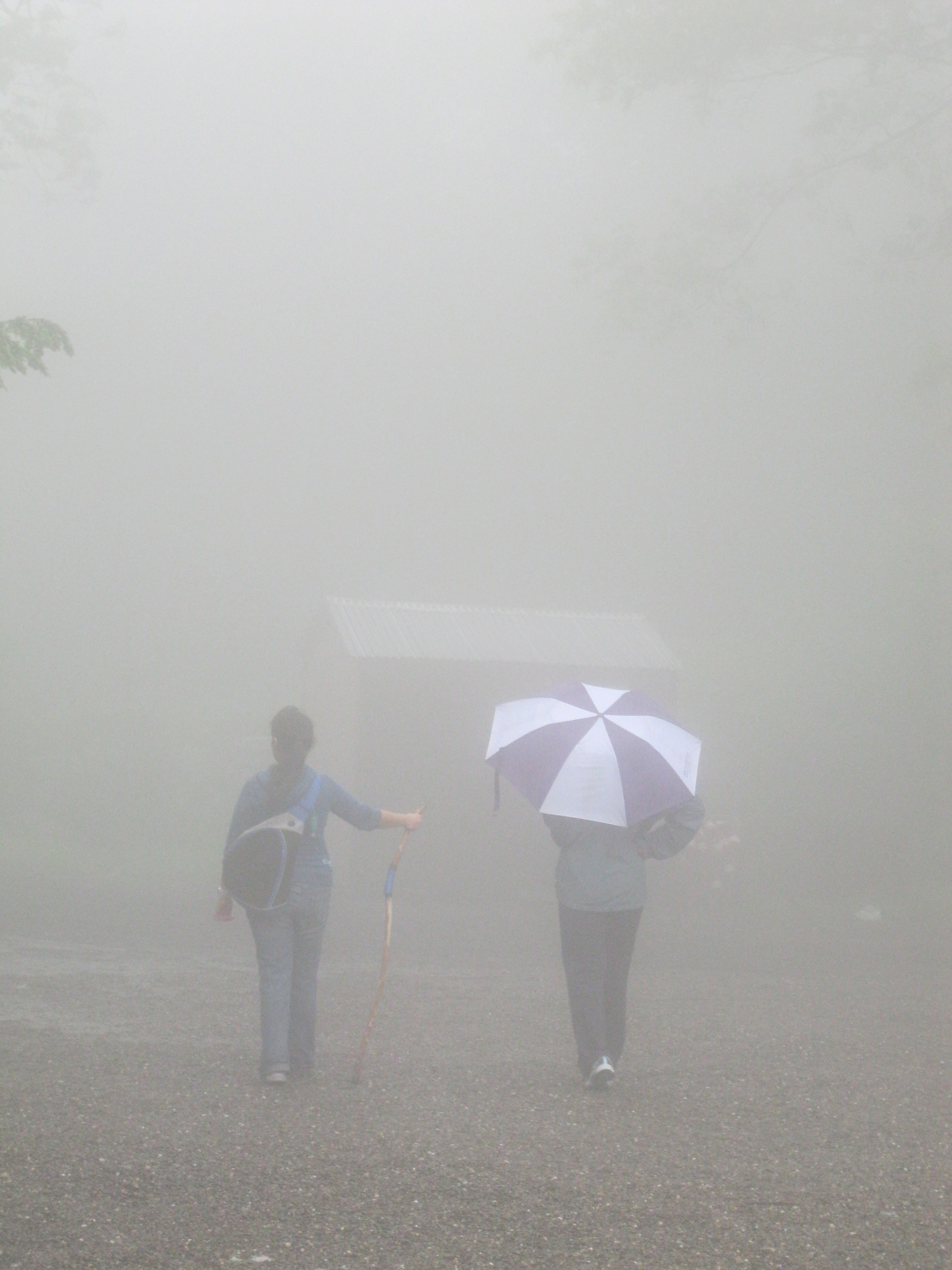 fog hike 2011.JPG