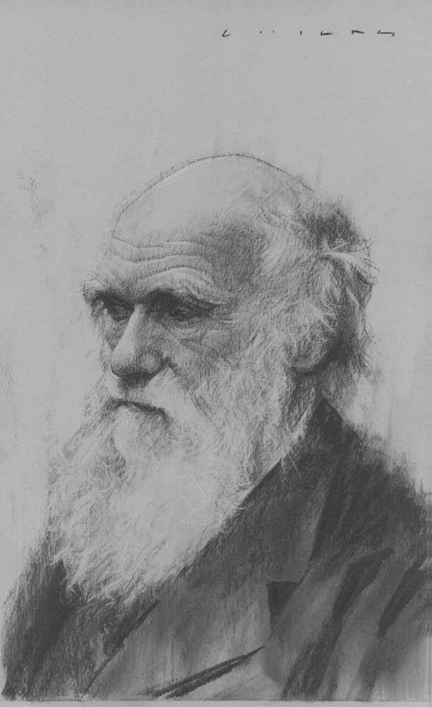 Charles Darwin    Print Available from Studio550 Press