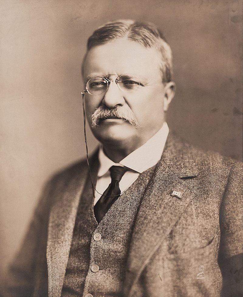 President Theodore Roosevelt, 1918