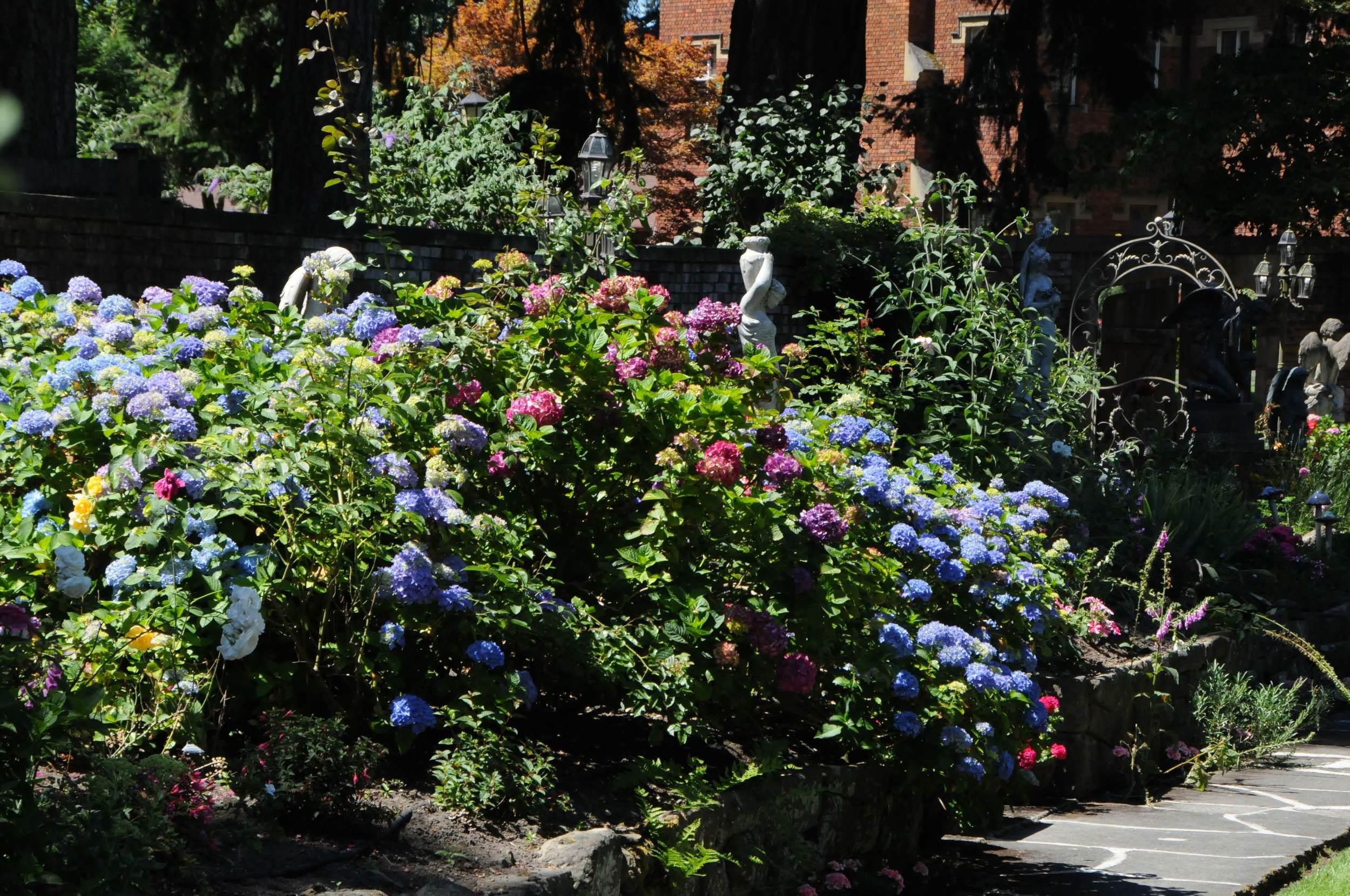Olmsted Garden.jpg