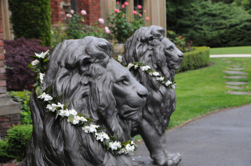 Lions at Thornewood Welcome.jpg