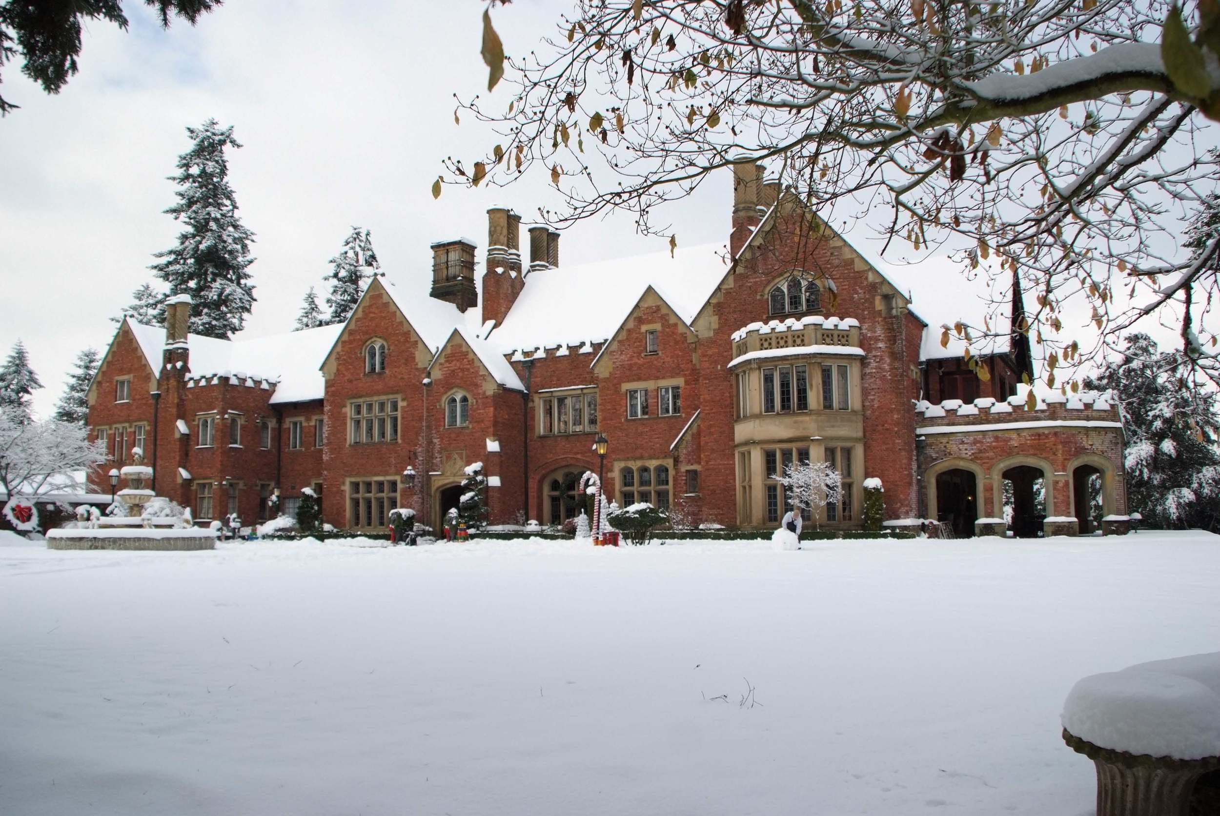 OCCASIONAL SNOW DAY AT THORNEWOOD.jpg