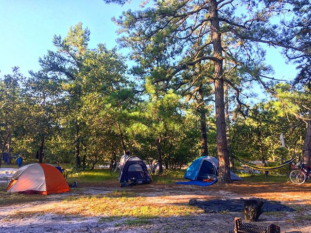 GONE CAMPIN'! We're going back to the pine barrens tomorrow and will be closed Saturday Sept 7! Follow #cyclescampout to see us get eaten by the Jersey Devil! #cyclesphl #whartonstateforest #bikecamping #bikepacking #camping #bodinefield #forest #pinebarrens