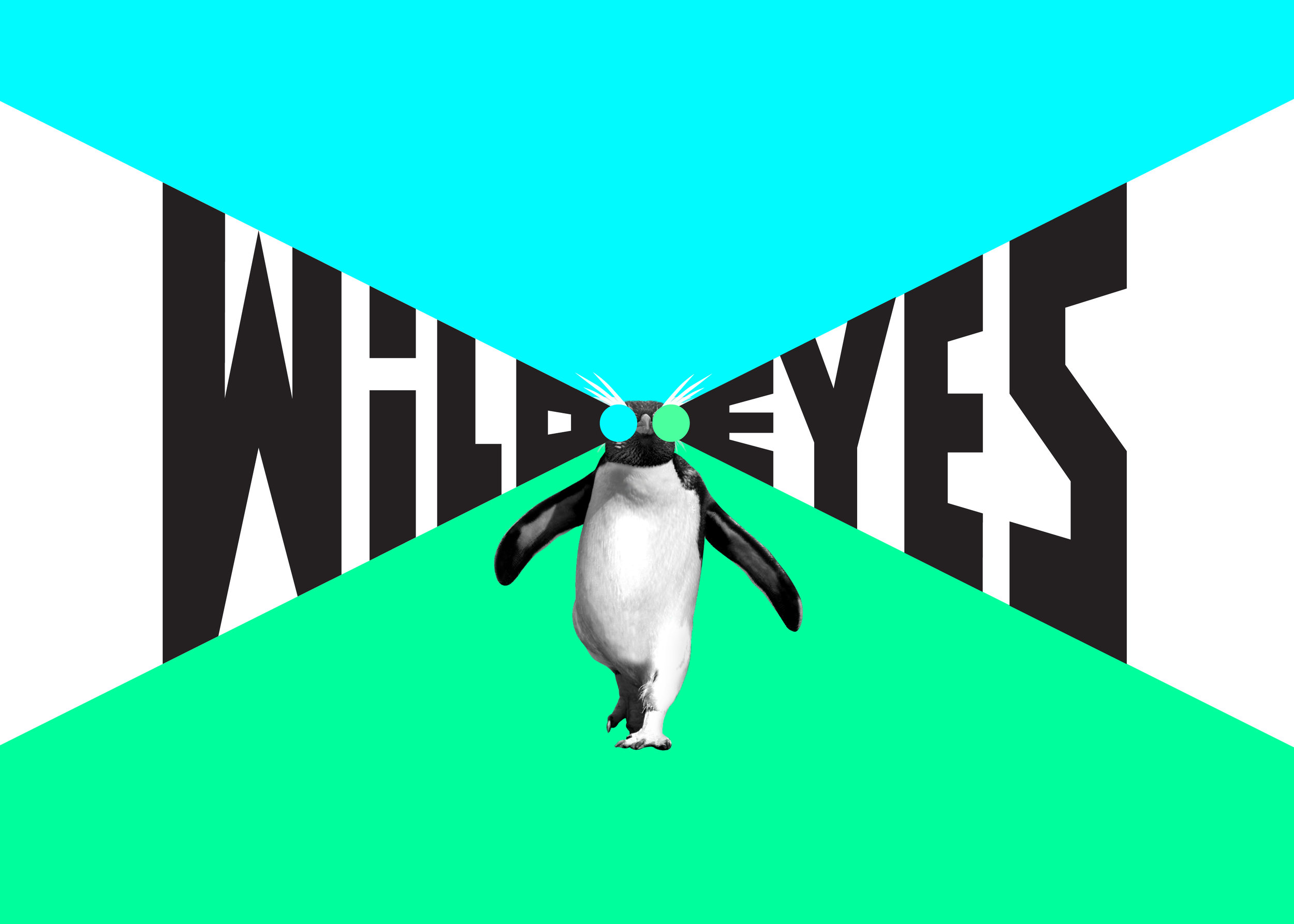 Wild Eyes is a social media platform for Kiwi kids. The lazer eyes inspired work won Silver at the Best Awards. Designed with Salted Herring,