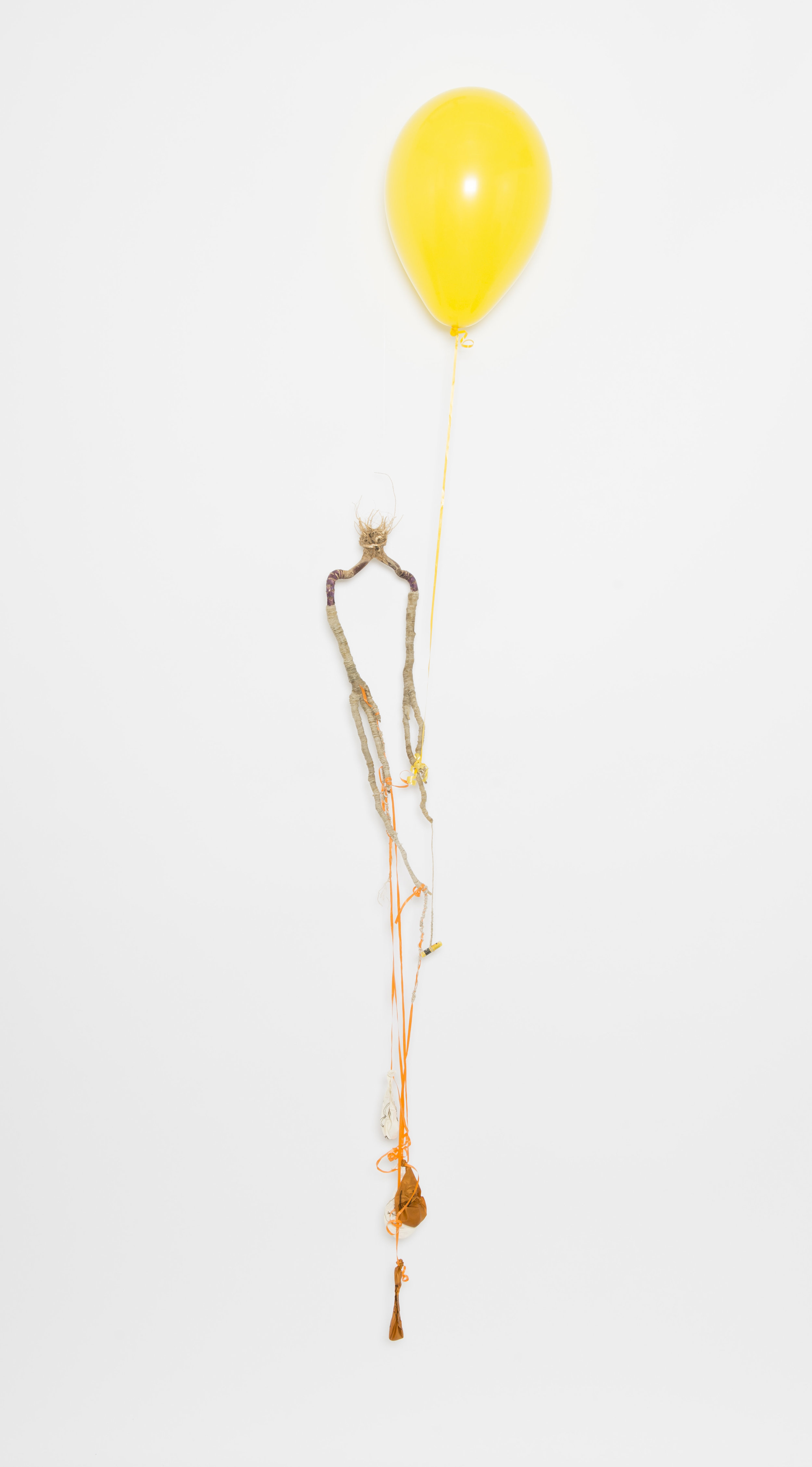 preserve-kale-yellow_17839066568_o.jpg