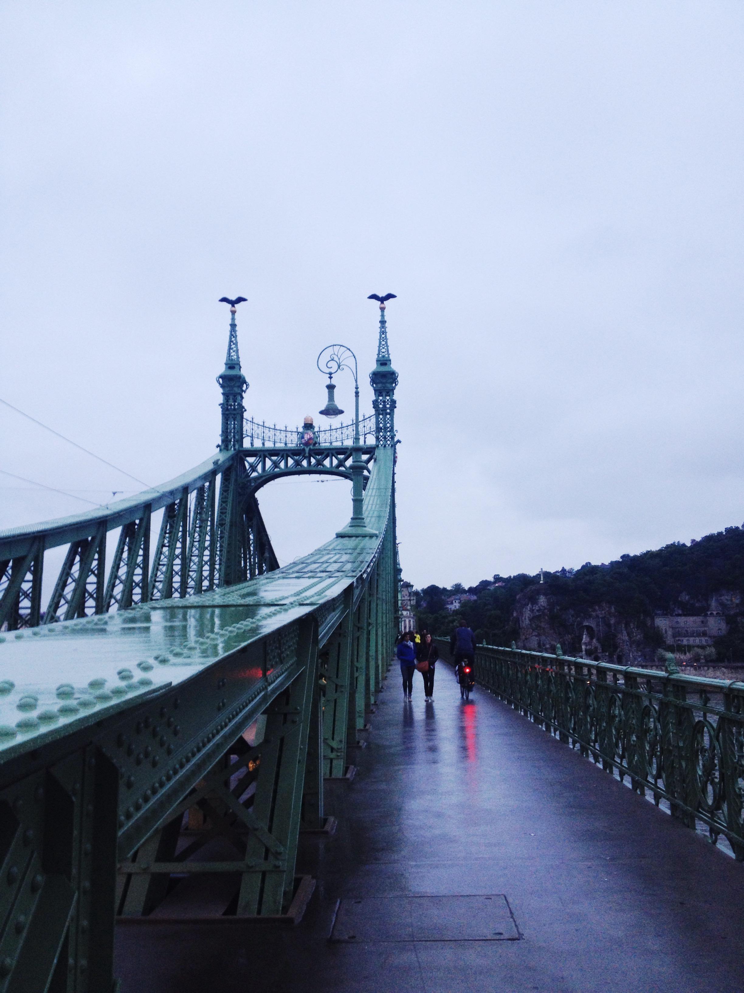 One of 7 bridges across Buda and Pest