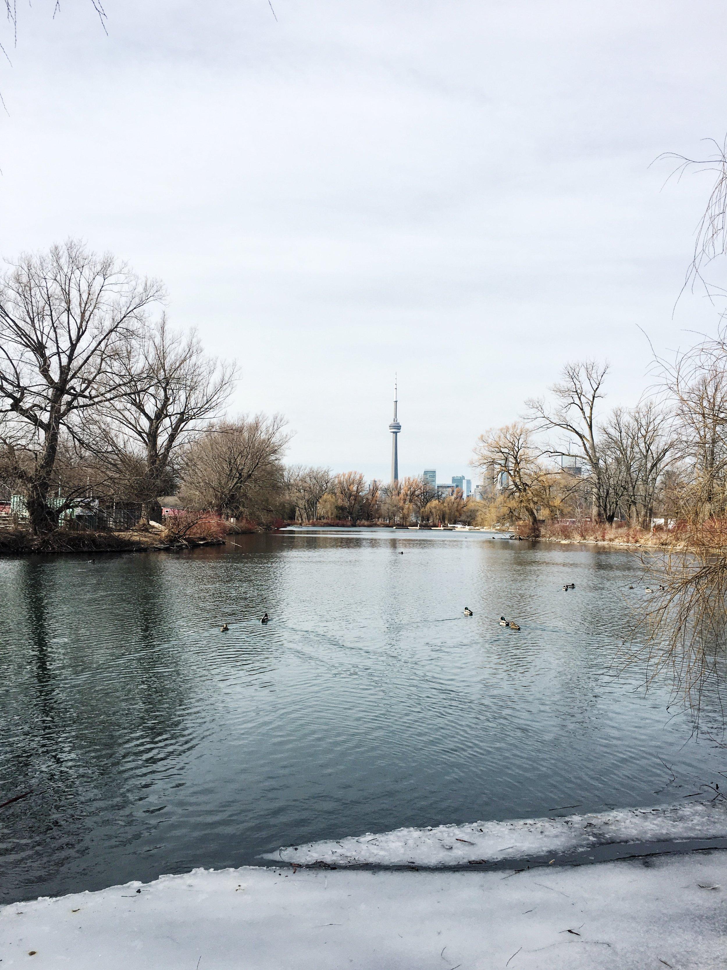 From Toronto island
