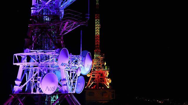 來看一下在稻佐山上看到的長崎夜景!在2012年被稱為新三大夜景之一,由高處往下看真的很美!我也很喜歡另一邊靠山的景色,可以看到斜張式的女神大橋!  遊記請到我的blog,連結在上面,尋找#039。  #長崎