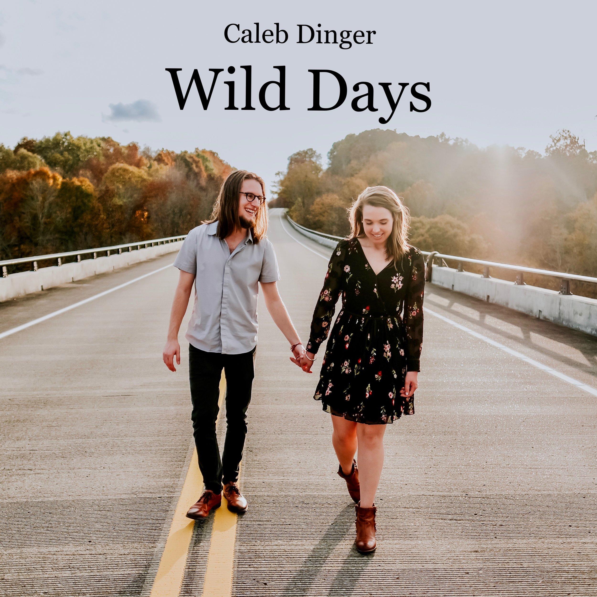 Wild Days Album Cover.jpg