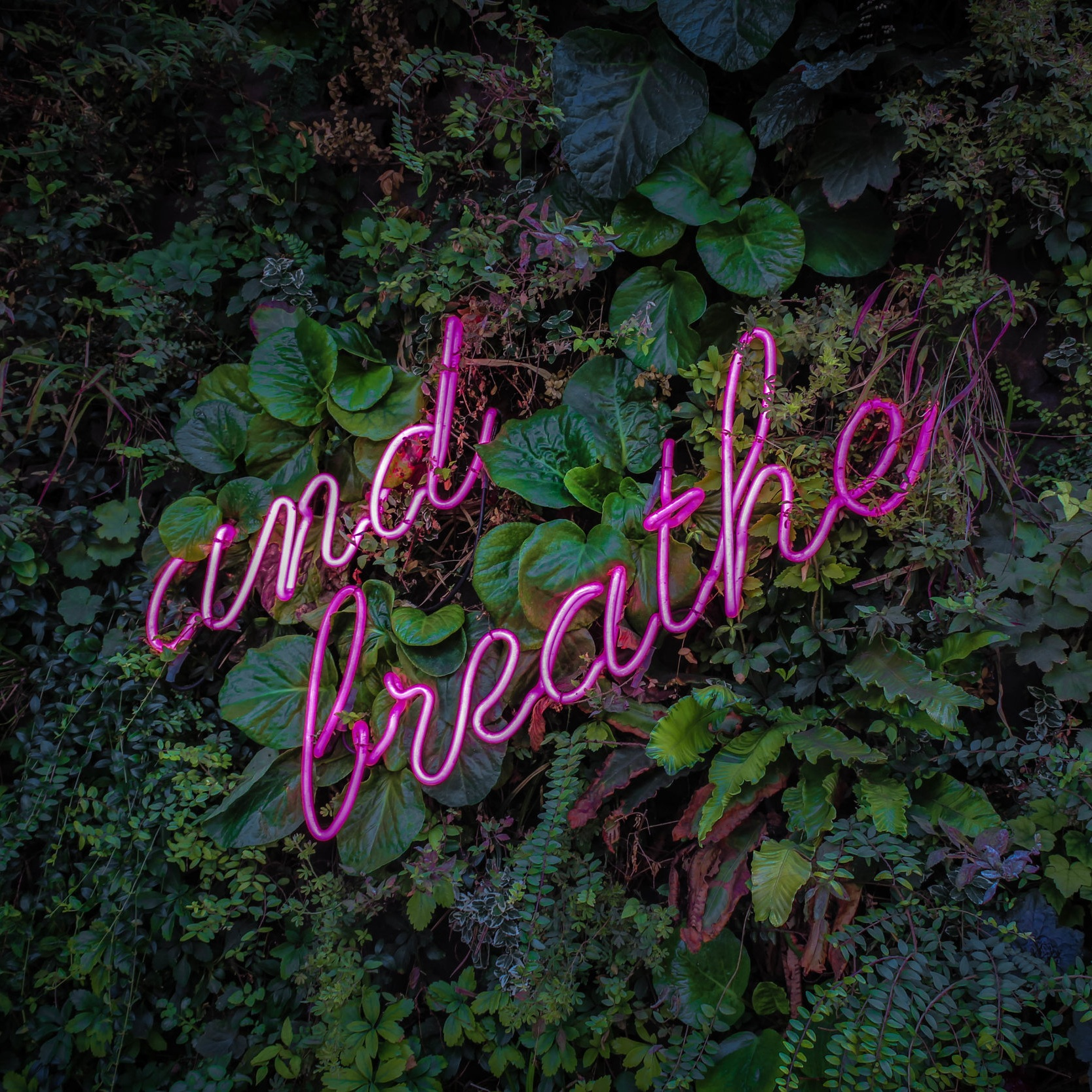 How to do breath meditation for beginners