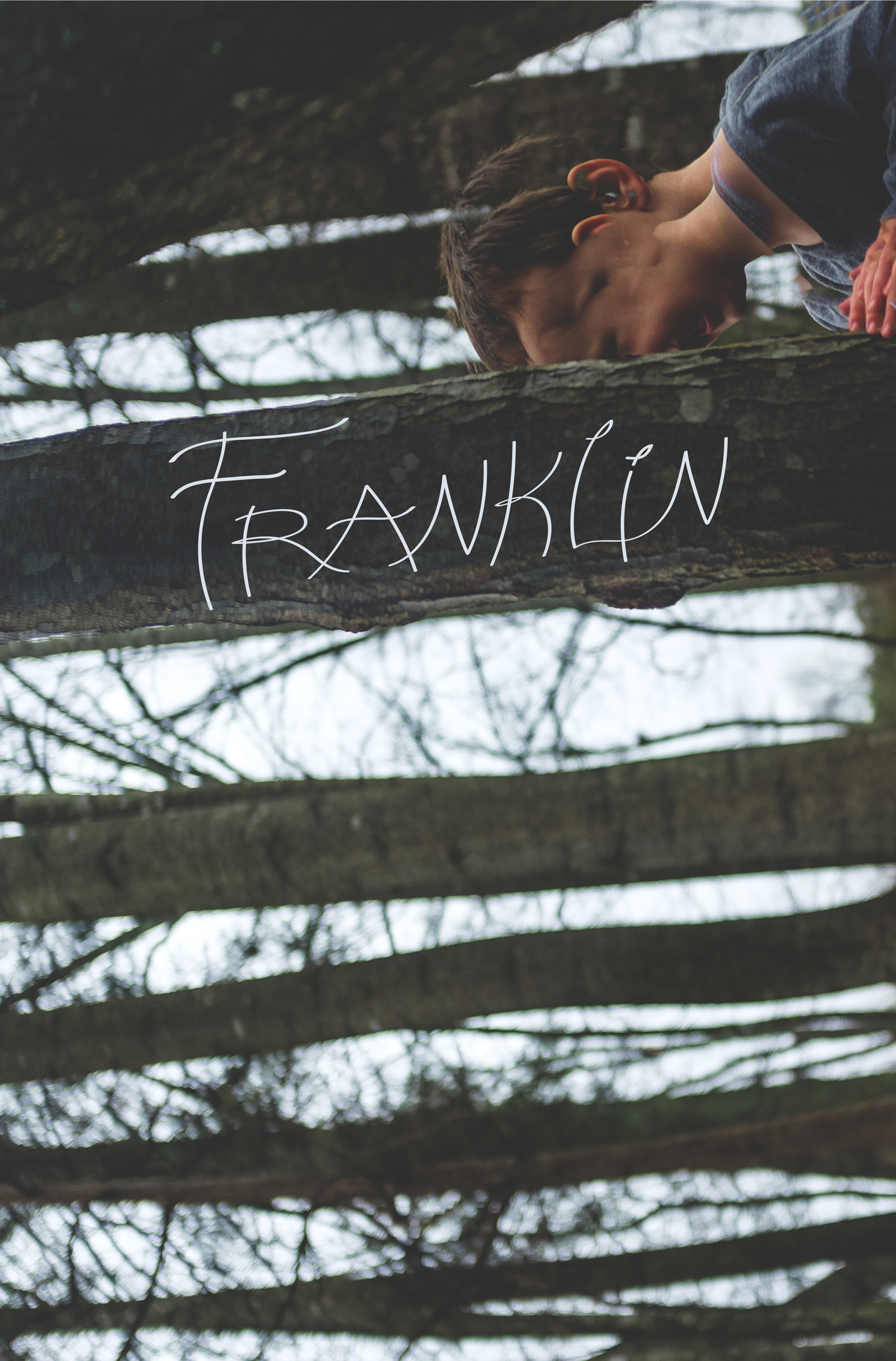 Franklin Poster-01.jpg