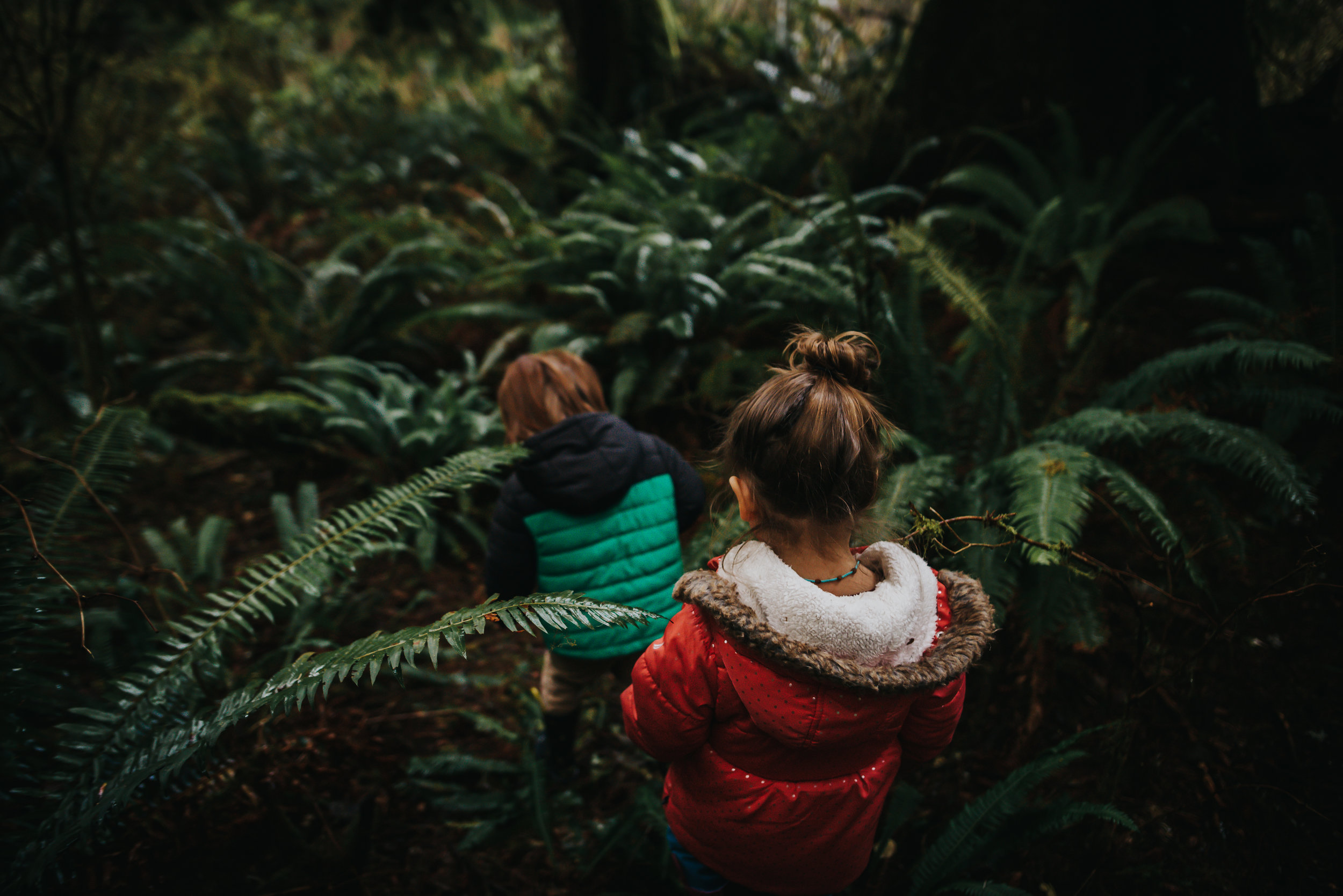 Twins explore the jungle on the Oregon Coast at Oswald West State Park.