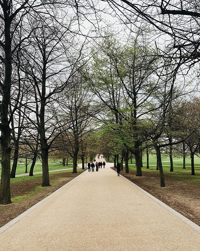 A walk in the park. | Greenwich Royal Park, London, England