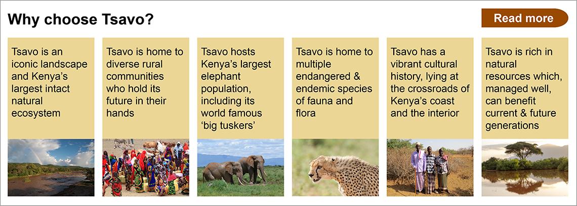 why choose tsavo?