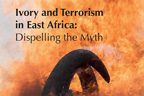 AS THE ELEPHANT DEBATE AT THE CITES CONVENTION LOOMS, TSAVOCON'S LATEST PUBLICATION DISCUSSES THE NEXUS BETWEEN IVORY AND TERRORISM.