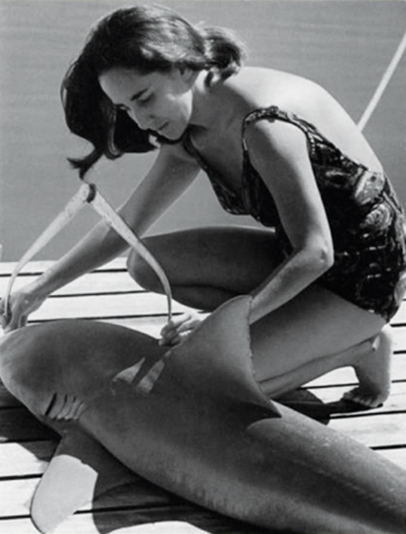 Genie measures a bull shark
