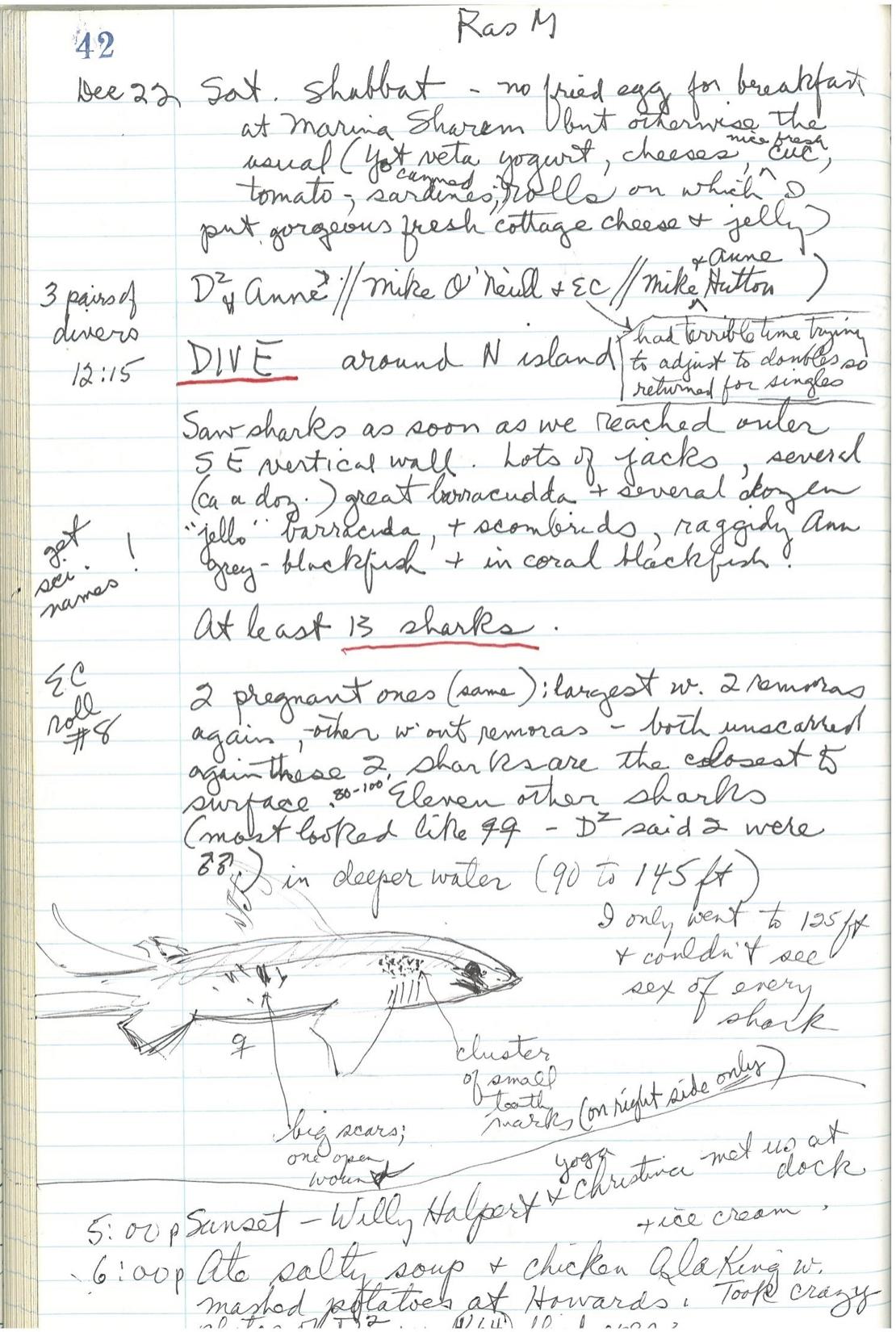 EC notes.1979.Egypt.jpg