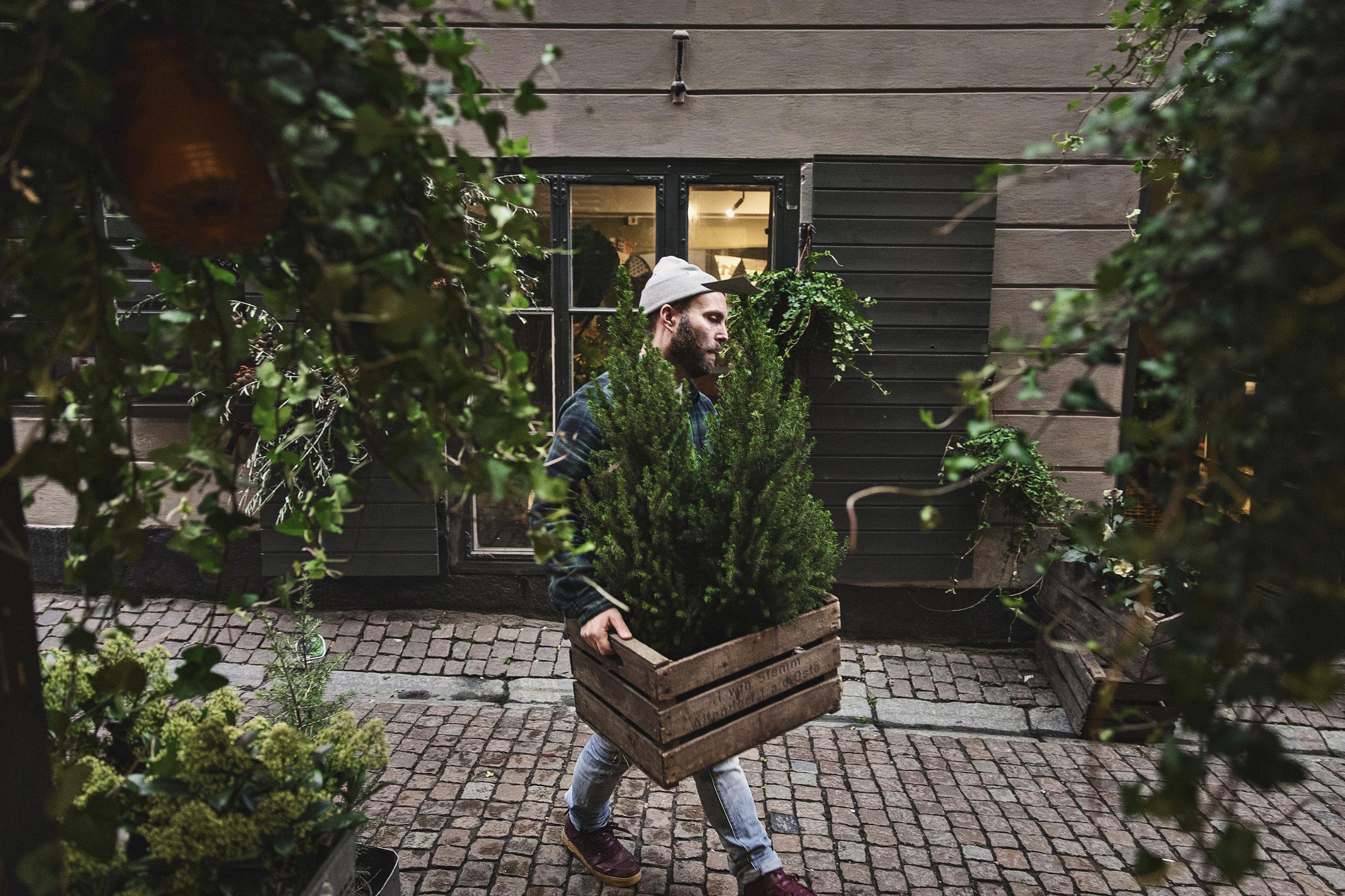20181107Christoffers Blommor, för Restaurangvärlden. Christoffer Broman och Johanna Larsson. Foto: Hilda Arneback