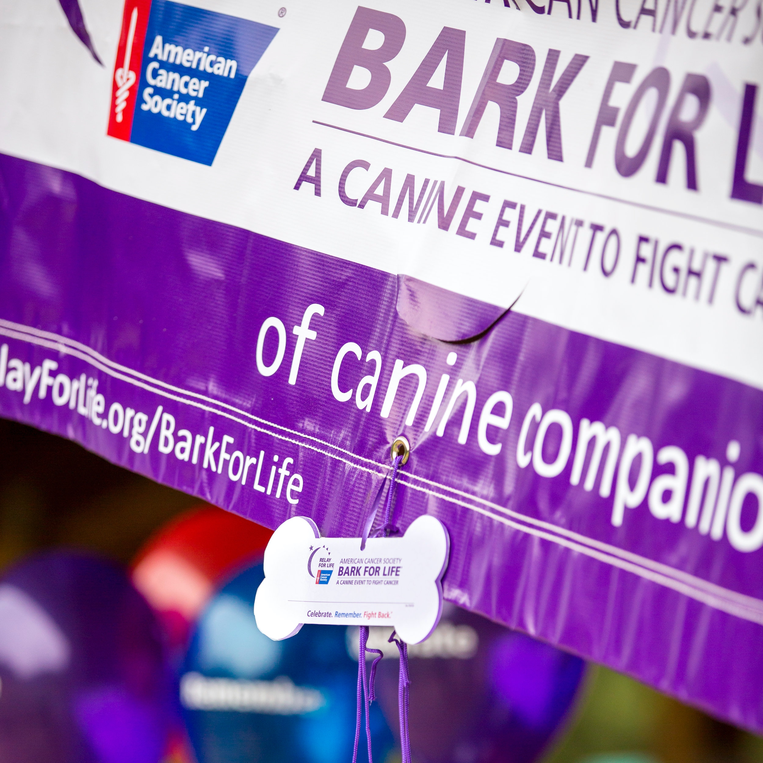 Bark For Life - Through Raise Your Way, Bark For Life is a fundraising event honoring the life-long contributions of our canine caregivers. These dogs demonstrate unconditional love, joy, compassion, and no judgments of cancer survivors' abilities or appearances.