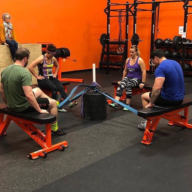 Sometimes you gotta get creative when you've got a packed class. Gather round the band hamstring curl tree! 😂🤷‍♂️ #gottagetcreativesometimes #makeitwork #crossfit #accessories