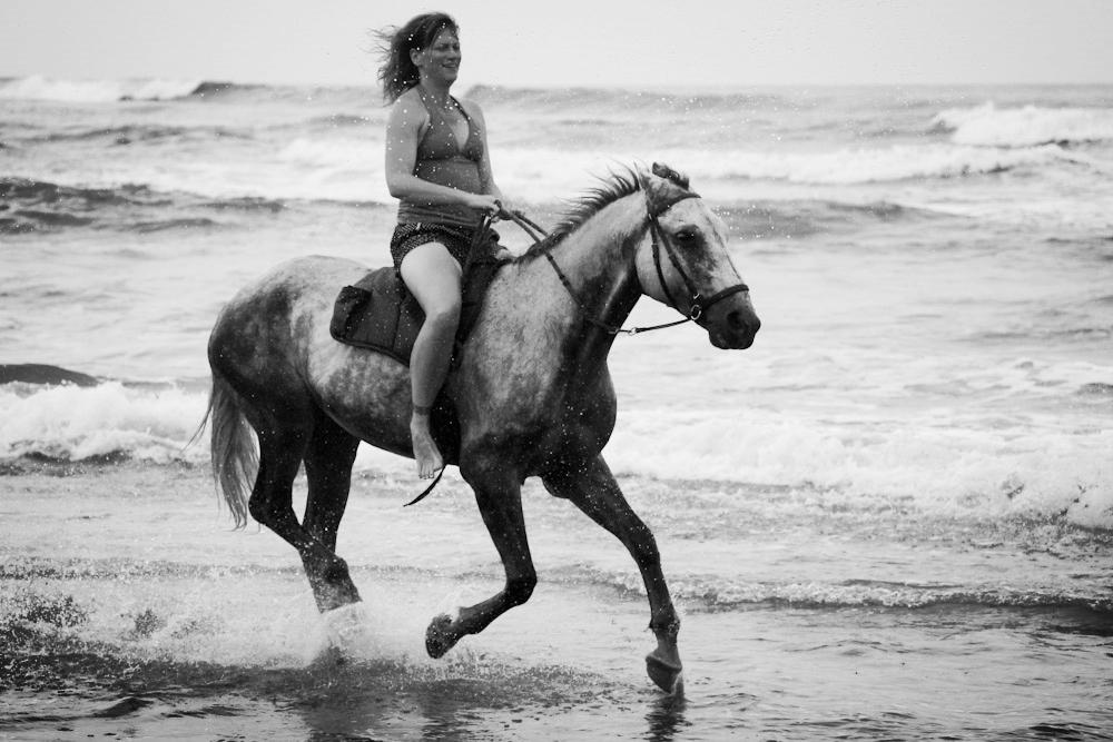 horse running beach.jpg