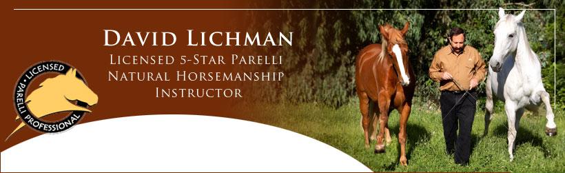 David Lichman Parelli Natural Horsemanship