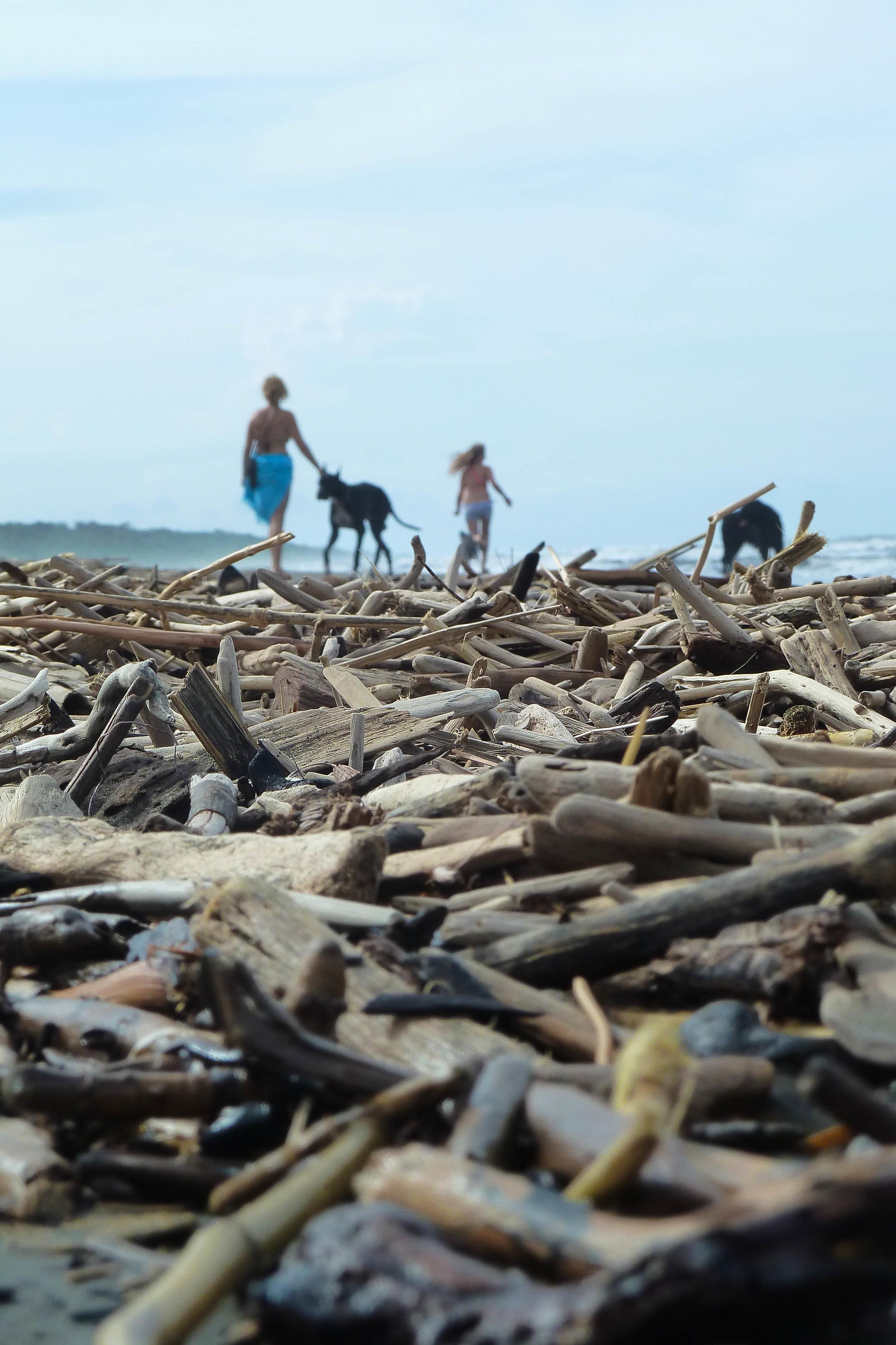 Cahuita beachcombers