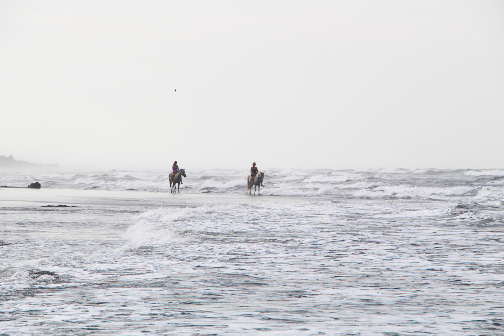 Beach Bliss with horses