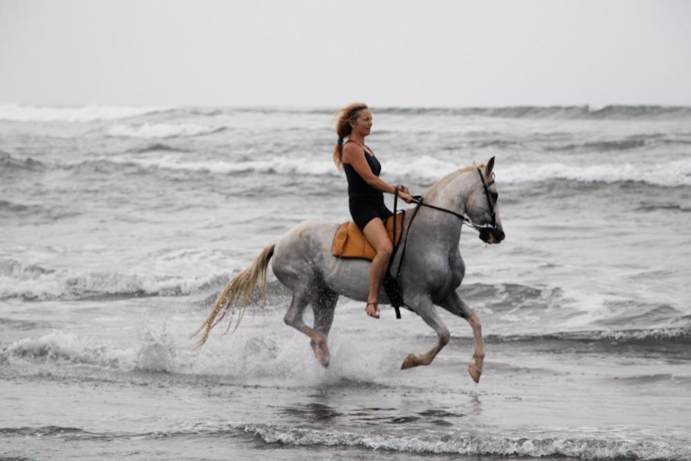 My Amazing Seahorse, Shiloh