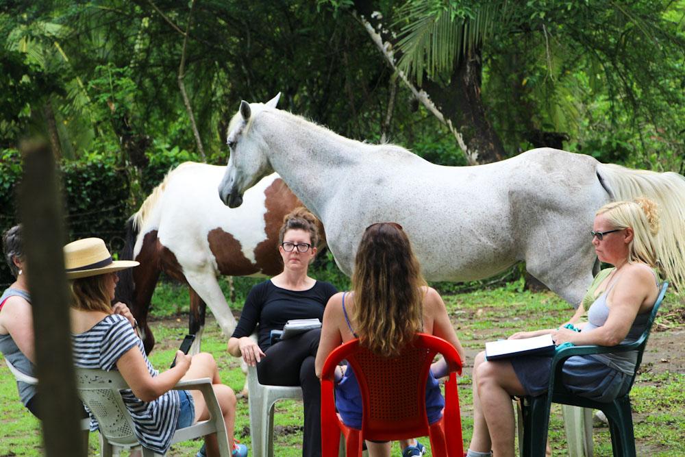 Equine Therapist Stacey Warner & guests