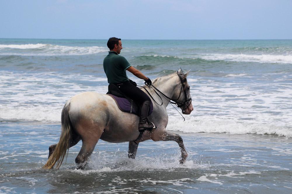 Javier Breton Perez leading Magnus on his 1st sea experience!