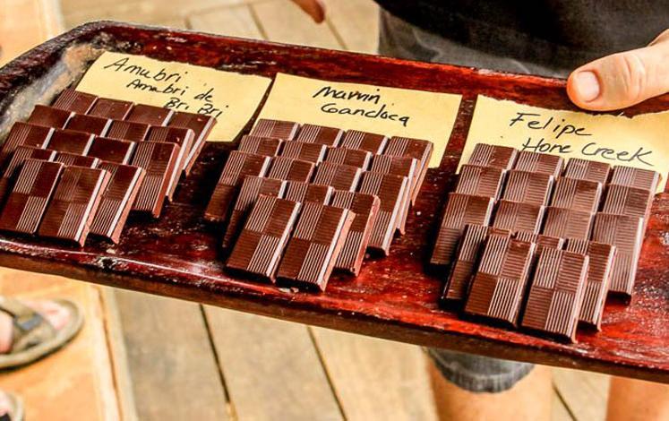organic-chocolate.jpg