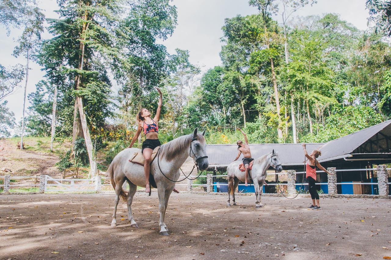 yoga-with-horses-128.jpg